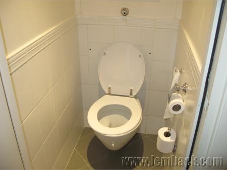 lousy toilet