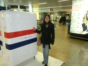 Tommy Hilfiger Luggages in Rome