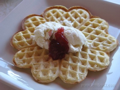 A waffle for Waffle Day