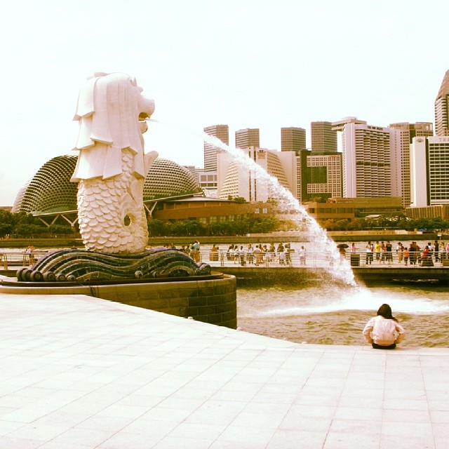 The Merlion. One of Singapore's symbols is standing nicely at the waterfront. #travel #Singapore #travelphoto #instaphoto