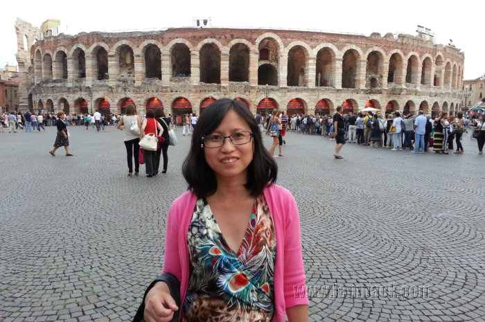 Verona Arena background